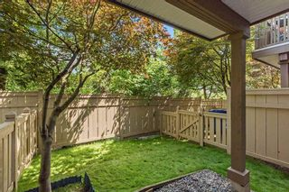 Photo 14: 62 20560 66 AVENUE in Langley: Willoughby Heights Townhouse for sale : MLS®# R2073052