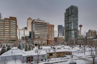Photo 18: 314 339 13 Avenue SW in Calgary: Beltline Apartment for sale : MLS®# A1067563