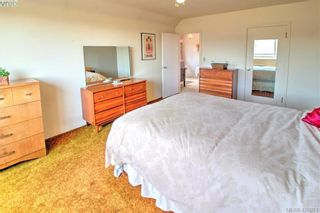 Photo 22: 3016 Henderson Rd in VICTORIA: OB Henderson House for sale (Oak Bay)  : MLS®# 840987