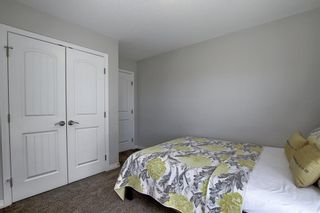 Photo 29: 287 AUBURN GLEN Drive SE in Calgary: Auburn Bay Detached for sale : MLS®# A1032601