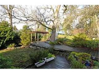 Photo 9: 3720 Blenkinsop Rd in VICTORIA: SE Maplewood House for sale (Saanich East)  : MLS®# 452940