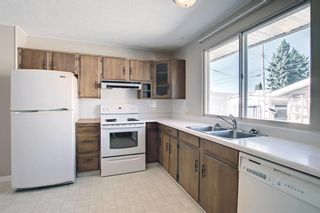 Photo 17: 132 Mardale Crescent NE in Calgary: Marlborough Detached for sale : MLS®# A1146772