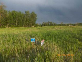Photo 3: Twp 54 RR 15: Rural Lac Ste. Anne County Rural Land/Vacant Lot for sale : MLS®# E4235215