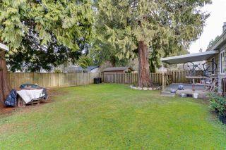 Photo 7: 1437 DUNCAN Drive in Delta: Beach Grove House for sale (Tsawwassen)  : MLS®# R2537198