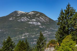 Photo 14: 38287 VISTA Crescent in Squamish: Hospital Hill Land Commercial for sale : MLS®# C8040256
