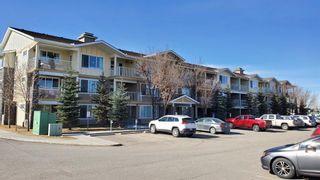 Photo 29: 1207 4 Kingsland Close SE: Airdrie Apartment for sale : MLS®# A1062903