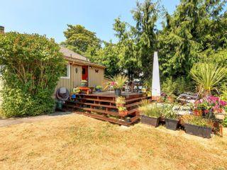 Photo 16: 3245 Harriet Rd in : SW Rudd Park House for sale (Saanich West)  : MLS®# 882510