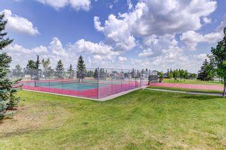 Photo 30: 267 Macewan Drive NW in Calgary: MacEwan Glen Detached for sale : MLS®# A1140518