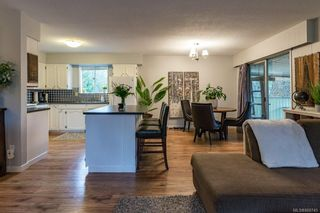 Photo 17: 1604 Dogwood Ave in : CV Comox (Town of) House for sale (Comox Valley)  : MLS®# 868745