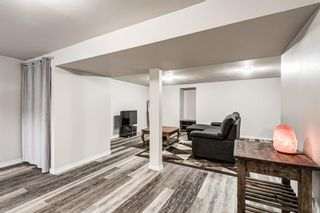Photo 30: 459 Queen Charlotte Road SE in Calgary: Queensland Detached for sale : MLS®# A1122590
