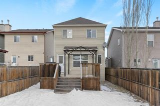 Photo 36: 19 Copperfield Terrace SE in Calgary: Copperfield Detached for sale : MLS®# A1062283