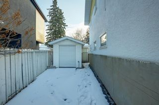 Photo 25: 11 Celtic Road NW in Calgary: Cambrian Heights Detached for sale : MLS®# A1050737