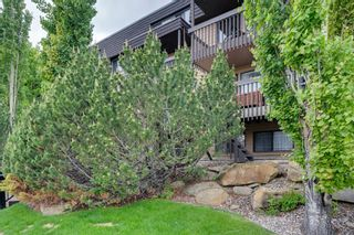 Photo 20: 20 3519 49 Street NW in Calgary: Varsity Apartment for sale : MLS®# A1117151