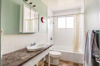 Photo 23:  in Edmonton: Zone 22 House for sale : MLS®# E4254166