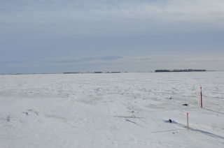 Photo 4: RR 261 Twp Rd 570: Rural Sturgeon County Rural Land/Vacant Lot for sale : MLS®# E4234298