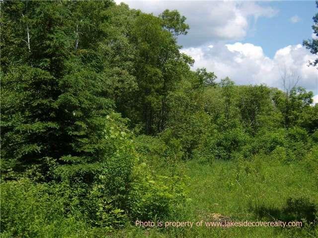 Main Photo: 4128 Fountain Drive in Ramara: Rural Ramara Property for sale : MLS®# X3531612