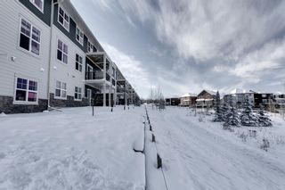 Photo 30: 502 428 Nolan Hill Drive NW in Calgary: Nolan Hill Row/Townhouse for sale : MLS®# A1064360