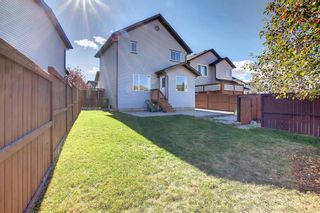 Photo 25: 135 Country Hills Heights in Calgary: Country Hills Detached for sale : MLS®# A1153171