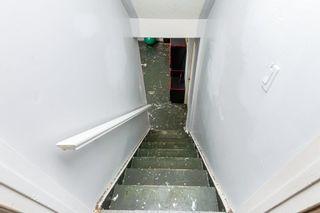 Photo 33: 28 GREER Crescent: St. Albert House for sale : MLS®# E4253444