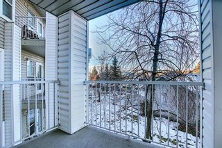 Photo 15: 3225 6818 Pinecliff Grove NE in Calgary: Pineridge Apartment for sale : MLS®# A1053438