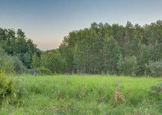 Photo 46: 31010 WOODLAND Heights in Rural Rocky View County: Rural Rocky View MD Detached for sale : MLS®# A1132034