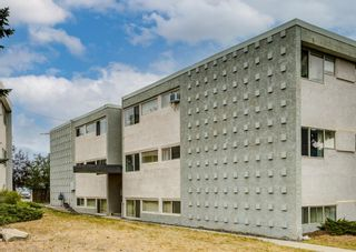 Photo 20: 106 8607 Elbow Drive SW in Calgary: Haysboro Apartment for sale : MLS®# A1138170