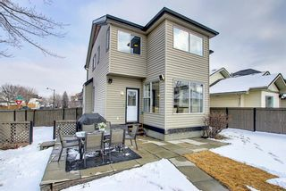 Photo 31: 51 Prestwick Street SE in Calgary: McKenzie Towne Detached for sale : MLS®# A1086286