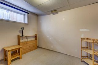 Photo 25: 55 Thornbird Way SE: Airdrie Detached for sale : MLS®# A1114077