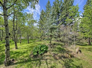 Photo 30: 75 Anatapi Lane SW in Calgary: Springbank Hill Detached for sale : MLS®# A1099057