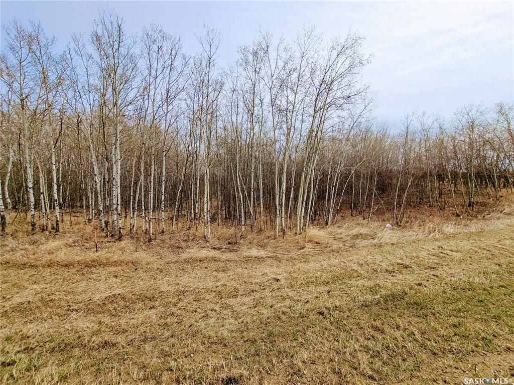 Main Photo: Parcel V Pike Lake Acreage in Pike Lake: Lot/Land for sale : MLS®# SK851189