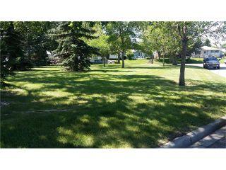 Photo 3: 136 Dover Ridge Bay SE in Calgary: Dover Glen House for sale : MLS®# C4024138