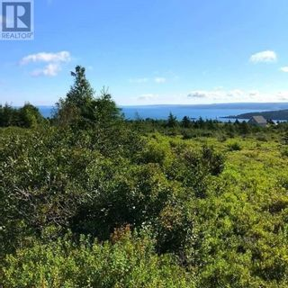 Photo 1: 6-8 Murphy's Road in Harbour Main: Vacant Land for sale : MLS®# 1228182