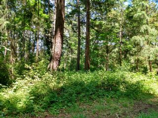 Photo 9: 20 Pirate Pl in : Isl Protection Island Land for sale (Islands)  : MLS®# 878593