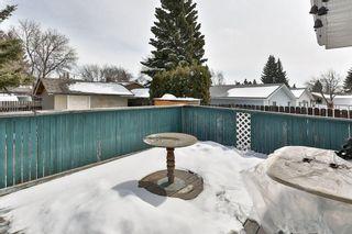 Photo 28: 1916 65 Street NE in Calgary: Pineridge House for sale : MLS®# C4177761