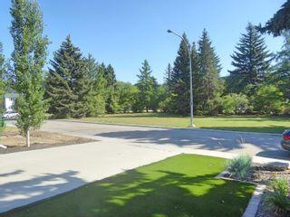 Photo 50: 8408 118 Street in Edmonton: Zone 15 House for sale : MLS®# E4260302