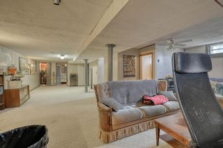 Photo 19: 10 Stanley Crescent SW in Calgary: Elboya Detached for sale : MLS®# A1089990