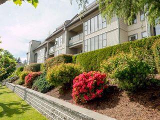 "Photo 1: 310 2925 GLEN Drive in Coquitlam: North Coquitlam Condo for sale in ""Glenborough"" : MLS®# R2615967"