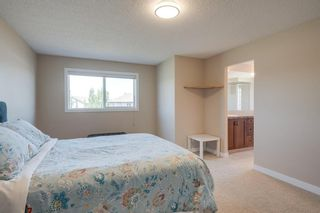 Photo 27: 160 Brightonstone Gardens SE in Calgary: New Brighton Detached for sale : MLS®# A1009065