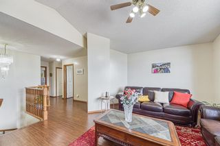 Photo 22: 23 Citadel Meadow Grove NW in Calgary: Citadel Detached for sale : MLS®# A1149022