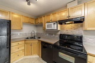 Photo 21: 329 16221 95 Street in Edmonton: Zone 28 Condo for sale : MLS®# E4250515