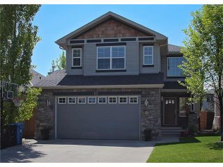 Photo 42: 67 CHAPMAN Way SE in Calgary: Chaparral House for sale : MLS®# C4065212