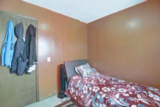 Photo 22: 120 Costa Mesa Close NE in Calgary: Monterey Park Detached for sale : MLS®# A1137993