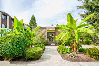 """Photo 30: 104 3921 CARRIGAN Court in Burnaby: Government Road Condo for sale in """"LOUGHEED ESTATES"""" (Burnaby North)  : MLS®# R2540449"""