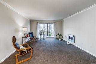 Photo 7: 305 1170 Rockland Ave in : Vi Rockland Condo for sale (Victoria)  : MLS®# 866972