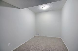 Photo 36: 253 Elgin Way SE in Calgary: McKenzie Towne Detached for sale : MLS®# A1087799