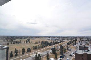 Photo 31:  in Edmonton: Zone 29 Condo for sale : MLS®# E4257177