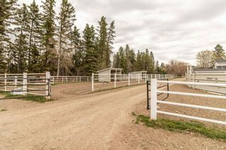 Photo 45: 393033 Range Road 5-0: Rural Clearwater County Detached for sale : MLS®# A1105398