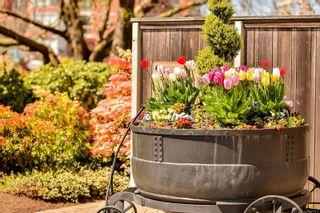 Photo 51: 809 225 Belleville St in : Vi James Bay Condo for sale (Victoria)  : MLS®# 877811