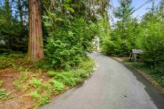 Photo 22: 8928 HAMMOND Street in Mission: Mission BC House for sale : MLS®# R2616754