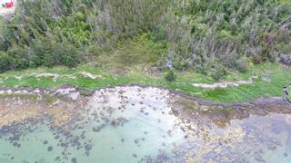 Photo 7: 618 Black Point Road in Ingomar: 407-Shelburne County Vacant Land for sale (South Shore)  : MLS®# 202114453
